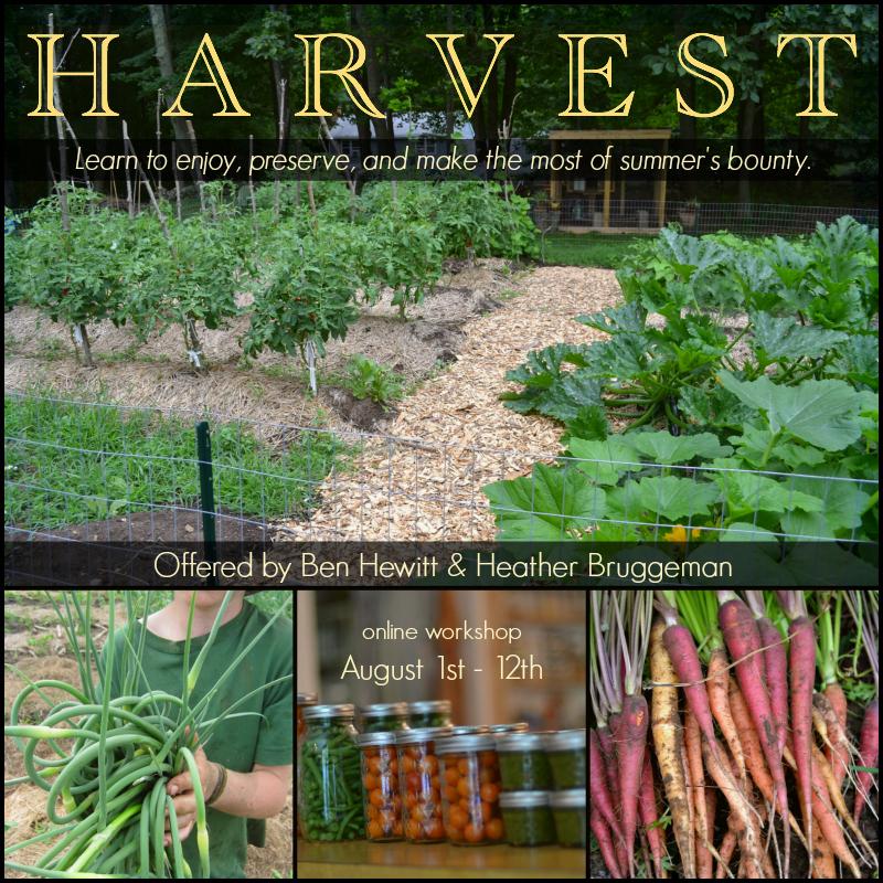 Harvest 2016 graphic