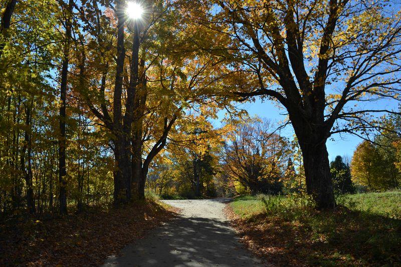 Vermont 7