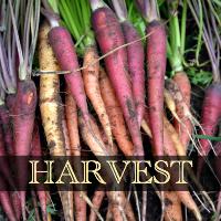 Harvest 200x200 (2)